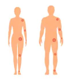 Full Body Profile